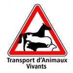 transport-animaux-vivants